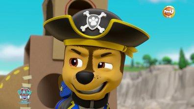Les chiens pirates