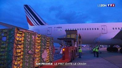 Compagnie aérienne : le fret évite le crash