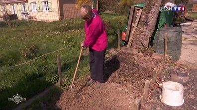 Confinement : ceux qui ont la chance d'en avoir profitent de leur jardin