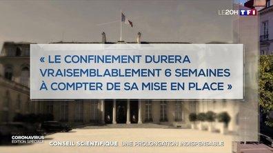 """Confinement : une prolongation """"indispensable"""" selon le Conseil scientifique"""