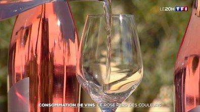 Consommation de vins : le rosé perd des couleurs