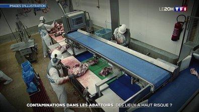 Contaminations dans les abattoirs : des lieux à haut risque ?