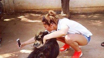 Coralie Porrovecchio prend la défense des animaux maltraités