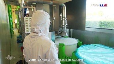 Coronavirus : comment la filière lait s'adapte-t-elle à la crise ?