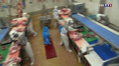 Coronavirus : les abattoirs, nouveaux lieux de contamination ?