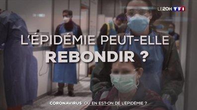 Coronavirus : où en est-on avec l'épidémie ?