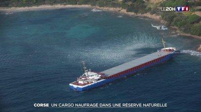 Corse : un cargo naufragé dans une réserve naturelle