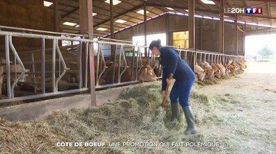 Côte de bœuf à 9,50 euros le kilo : la colère d'une éleveuse