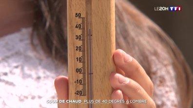 Coup de chaud : plus de 40 degrés à l'ombre à Auch