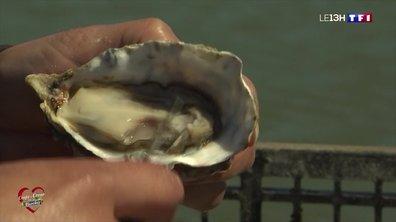 """""""Coups de cœur pour nos marchés"""" : le marché de la Flotte et les huîtres de l'île de Ré"""