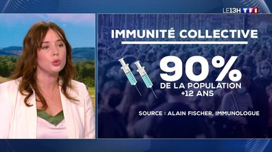 Covid-19 : l'immunité collective est-elle atteignable ?