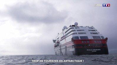 Croisière : de plus en plus de touristes en Antarctique
