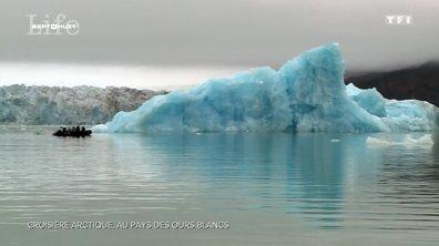 Croisière en Arctique, au pays de l'ours blanc