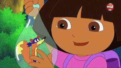 Danse, Dora, danse  ! - Danse Dora danse