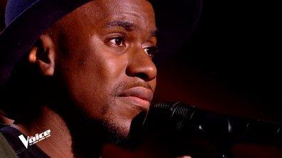 """David Té : Émotion forte avec """"Formidable"""" de Stromae"""