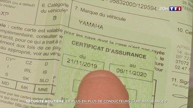 De plus en plus d'automobilistes roulent sans assurance