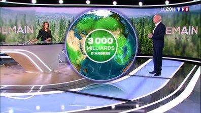 DEMAIN EN 3D - Des arbres pour préserver notre biodiversité et notre planète