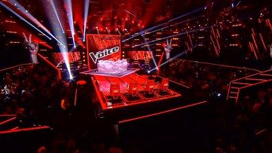 The Voice 4 - EN IMAGES : Le résumé des auditions du samedi 14 février 2015