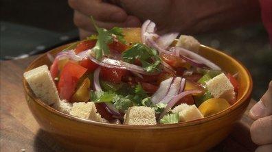 Mi-soupe mi-salade de tomates