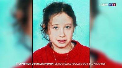 Disparition d'Estelle Mouzin : de nouvelles fouilles en cours en présence de Monique Olivier