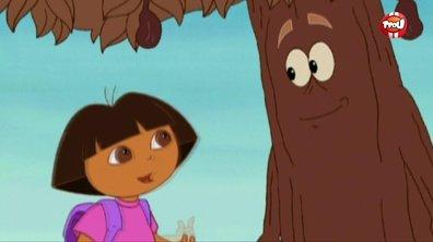 L'arbre à chocolat - Dora l'exploratrice