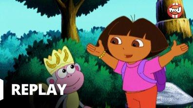 Dora l'exploratrice - Babouche est à la fête