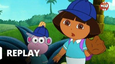 Dora l'exploratrice - Babouche le baseballeur