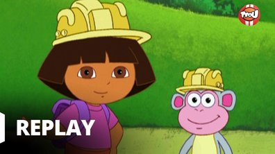 Dora l'exploratrice - La balade des métiers