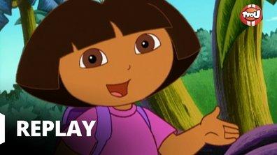Dora l'exploratrice - Les bons amis