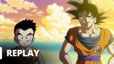 Dragon ball super - Episode 75 - Goku et Krilin. Retour aux bonnes vieilles méthodes d'entraînement