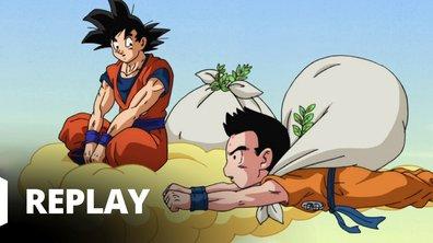 Dragon ball super - Episode 76 - Vaincre de redoutables adversaires. L'esprit combatif de Krilin renaît !