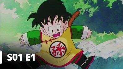 Dragon Ball Z - S01 E01 - Un mystérieux guerrier