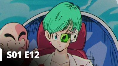 Dragon Ball Z - S01 E12 - Un chemin sans fin