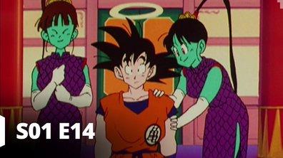 Dragon Ball Z - S01 E14 - Hospitalité princière
