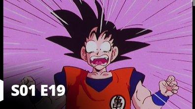 Dragon Ball Z - S01 E19 - La loi de la pesanteur