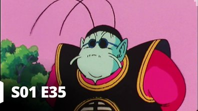 Dragon Ball Z - S01 E35 - Une étonnante transformation