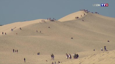 Dune du Pilat : une vue imprenable sur le Bassin d'Arcachon