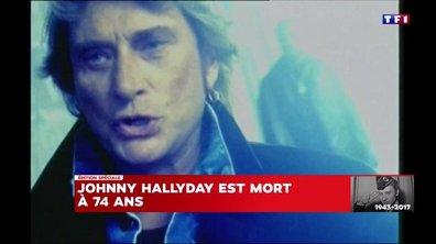 Johnny Hallyday – Les années 1990-2000