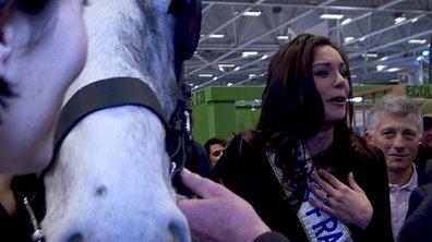 Miss France : la belle et les bêtes au Salon de l'Agriculture