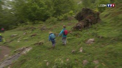 En randonnée dans les Pyrénées