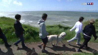 """""""En vacances avec vous"""" : cours de surf sur la Côte d'Opale"""