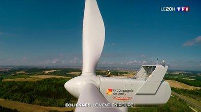 Énergie renouvelable : à qui profite l'implantation des éoliennes ?
