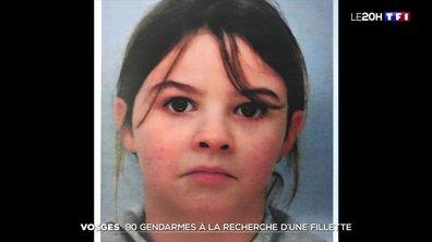 Enlèvement de Mia dans les Vosges : 90 gendarmes à la recherche de la petite fille de 8 ans