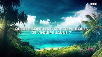 Exclu. Alexia Laroche-Joubert vous parle de l'équipe jaune (VIDEO)