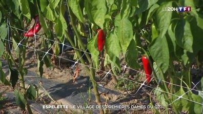 Espelette : le village des Premières dames du G7