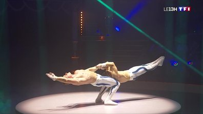 """Faire rire et frissonner le public, """"Défi"""" réussi pour le cirque Bouglione"""