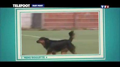 Le Fast Foot du 15 septembre 2013
