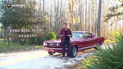 La Ford Mustang Fastback de 1966