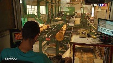 Filière du bois : des postes à pourvoir dans les scieries de l'Ain