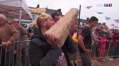 Finistère : les menhirs se sont envolés à Guerlesquin
